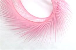 Гусиное перо, Pink