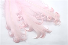 Гусиное перо, Light Pink