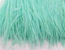 Перо страуса на ленте, Aqua Green