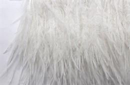 Перо страуса на ленте, White
